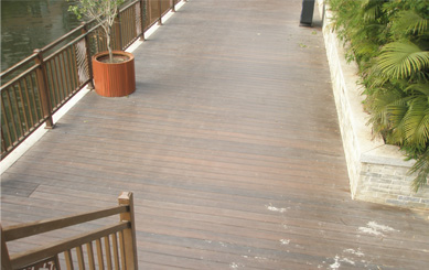 Co-extrusion Decking by the River